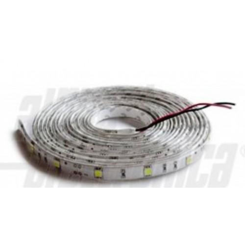 Nastri flessibili led-Monocromatici-12V