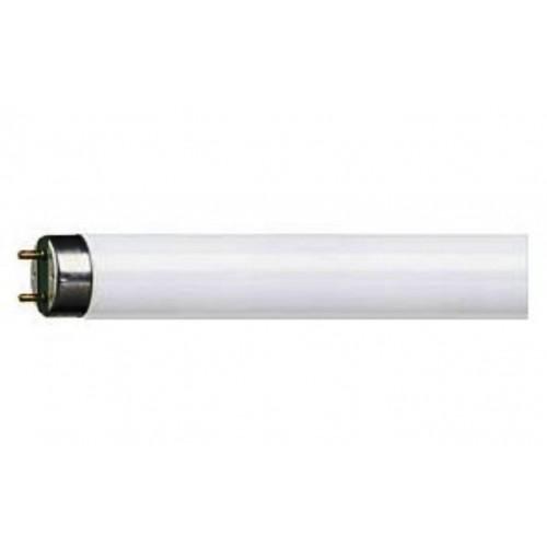 Tubi fluorescenti